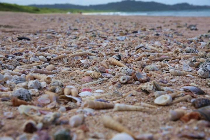 Playa Grande.jpg, notjustabroad.com